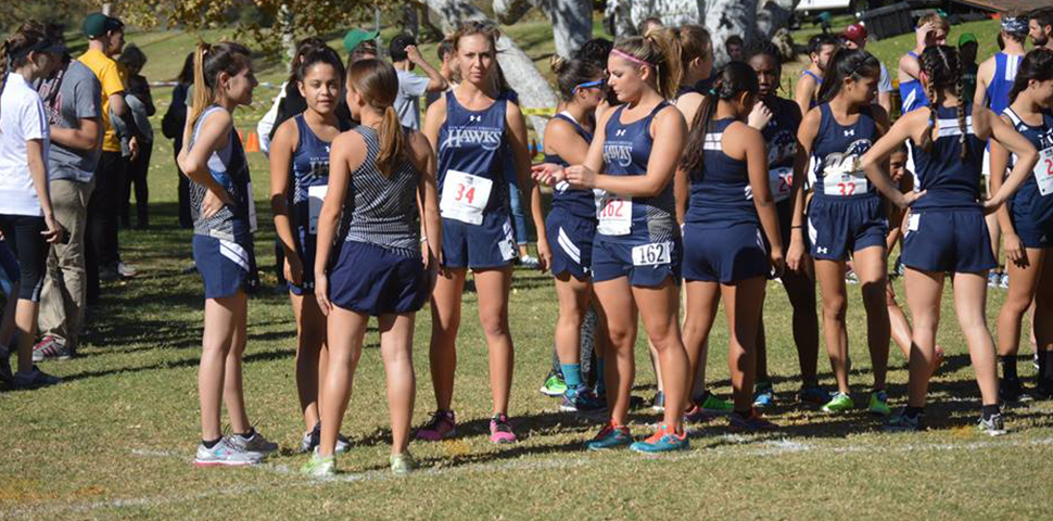 Photo for Hawks Finish Season at GSAC Championships